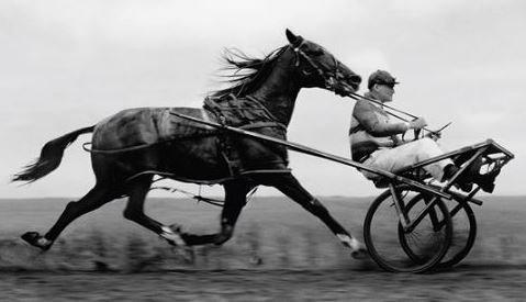 Cart Before the Horse: Marketing Strategy vs. Tactics