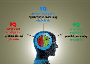 IQ EQ SQ