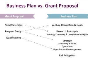 Business Plan vs. Grant 581x387