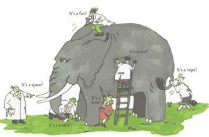 Elephant Parable