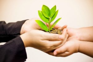 Impact Investing giving plant small