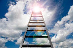 Ladder small
