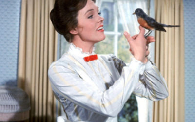 The Mary Poppins Guide to Making the Best Use of Nonprofit Downtime