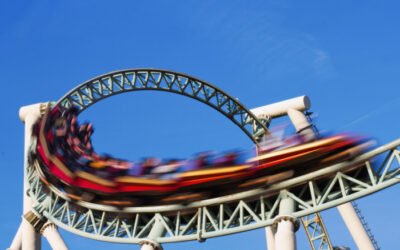 The Roller Coaster Ride of Nonprofit Governance in 2020