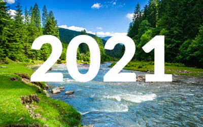 2021 Nonprofit Trends: Shifting Our Focus to Upstream Nonprofit Work